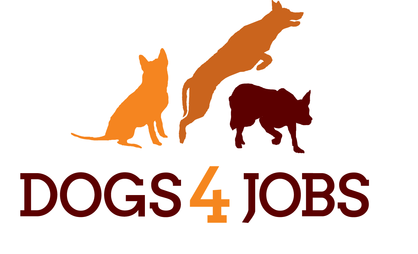 Dogs 4 Jobs